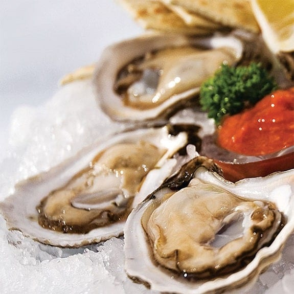 raw oysters on the half shell magic skillet