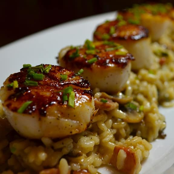 seared scallops with creamy risotto
