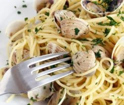 spaghetti with clams and squid