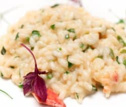 truffled lobster risotto