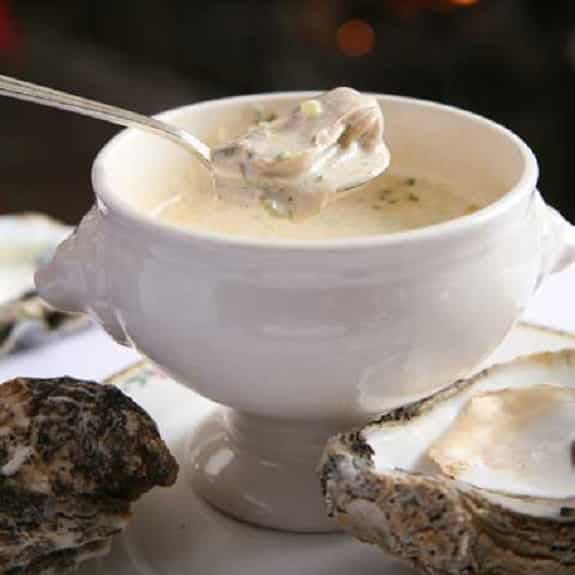 oyster soup