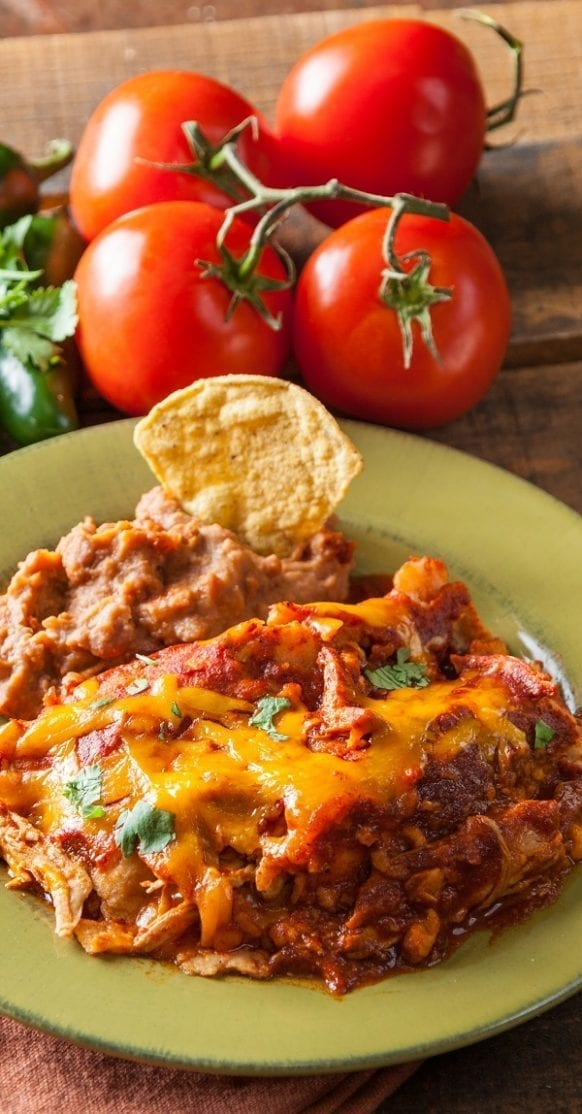 Instant pot enchilada-braised chicken recipe. Chicken breasts with spices and beer cooked in an electric instant pot. Quick and yummy chicken recipe! #instantpot #pressurecooker #chicken #dinner #enchilada #mexican #yummy #homemade