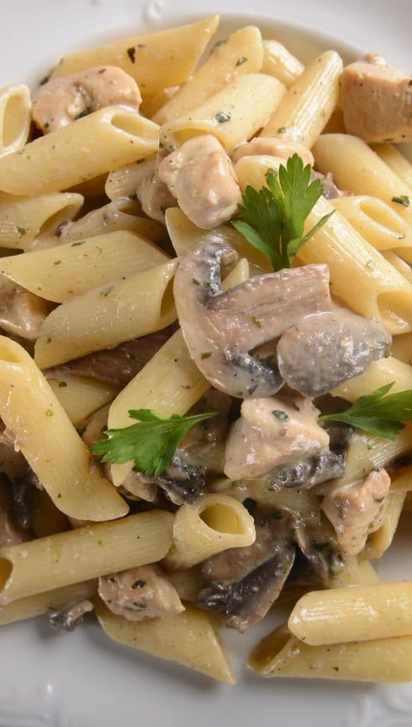 Slow cooker chicken stew with white wine. Cubed chicken breasts with vegetables and dry white wine cooked in a slow cooker. Serve this delicious stew over the cooked penne pasta with Italian bread to soak up the delicious broth. #slowcooker #crockpot #chicken #stew #mushrooms
