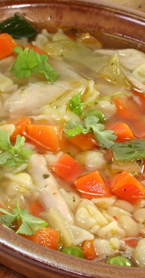 Pressure cooker chicken noodle soup. This is a classic chicken noodle soup. Chicken breasts with vegetables and egg noodles cooked in a pressure cooker. Very easy and tasty. #pressurecooker #instantpot #chicken #noodles #soup #healthy